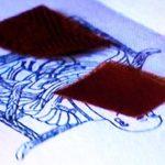 高野山奥之院・弘法大師の衣の布