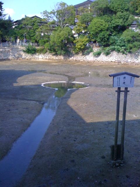 kaiun-厳島神社の鏡の池