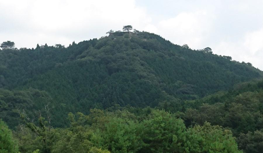 下から見る竹田城跡